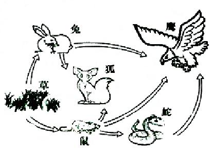 简笔画 设计 矢量 矢量图 手绘 素材 线稿 412_302